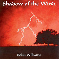 Bekki Williams - Shadow Of The Wind