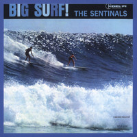 The Sentinals - Big Surf