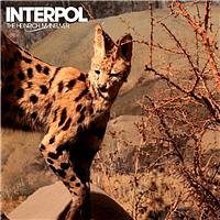 Interpol - The Heinrich Maneuver