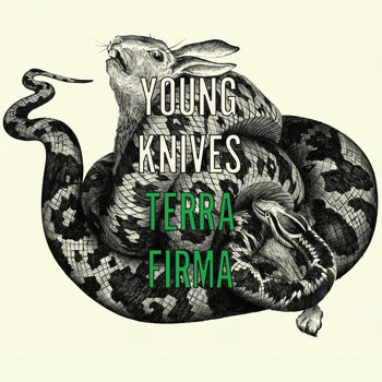 The Young Knives - Terra Firma (1 track DMD)