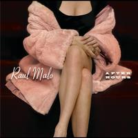 Raul Malo - After Hours
