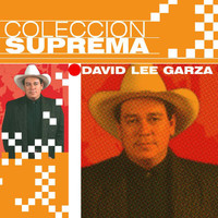 David Lee Garza - Coleccion Suprema