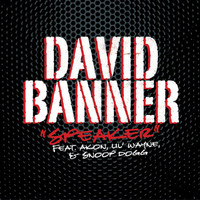 David Banner / Akon / Lil Wayne / Snoop Dogg - Speaker