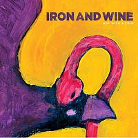 Iron And Wine - The Boy With The Coin