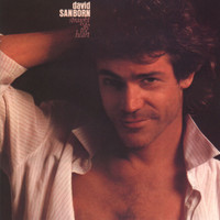 David Sanborn - Straight To The Heart (Live)