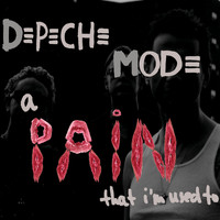 Depeche Mode - A Pain That I'm Used To (DMD Maxi)