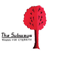 The Subways - I Want To Hear What You Have Got To Say (US DMD)