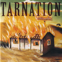 Tarnation - Mirador