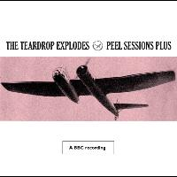 The Teardrop Explodes - Peel Sessions Plus