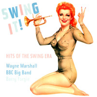 Wayne Marshall - Swing it
