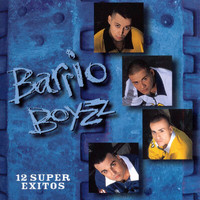 Barrio Boyz - 12 Super Exitos