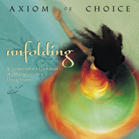 Axiom Of Choice - Unfolding
