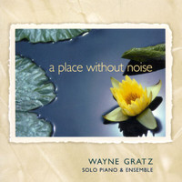 Wayne Gratz - A Place Without Noise