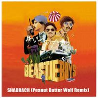 Beastie Boys - Shadrach (Peanut Butter Wolf Remix)