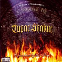 Various Artists- A Tribute to Tupac Shakur - A Tribute to Tupac