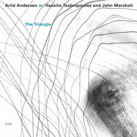 Arild Andersen - The Triangle
