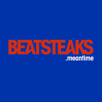 Beatsteaks - Meantime (2-Track)