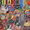 Smash Your Head On The Punk Rock  Sebadoh