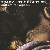 Tracy + The Plastics - Culture For Pigeon