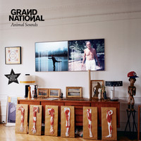 Grand National - Animal Sounds
