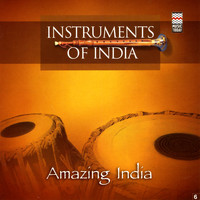 Instruments of India - Amazing India