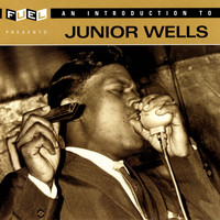 Junior Wells - An Introduction To Junior Wells