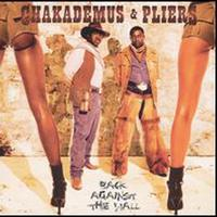 Chaka Demus & Pliers - Back Against The Wall