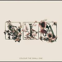 Sia - Colour The Small One