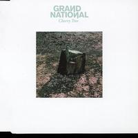 Grand National - Cherry Tree
