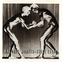 Various Artists - Natures Mortes - Still Lives