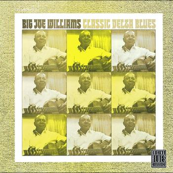 Big Joe Williams - Classic Delta Blues