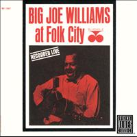 Big Joe Williams - At Folk City (Remastered)