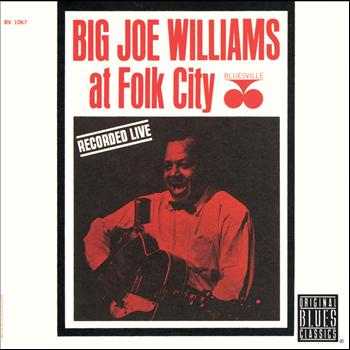 Big Joe Williams - At Folk City