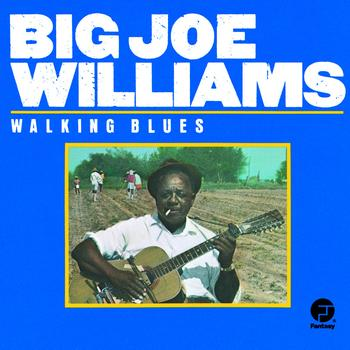Big Joe Williams - Walking Blues