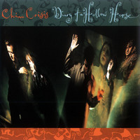 China Crisis - Diary Of A Hollow Horse