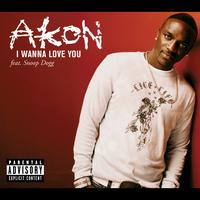 Akon - I Wanna Love You (Intl MaxiEnhanced)