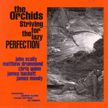 The Orchids - Striving For The Lazy Perfection