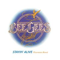 Bee Gees - Stayin' Alive [Teddybears Remix]