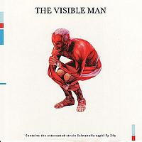 David Byrne - The Visible Man