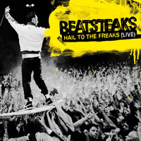 Beatsteaks - Hail To The Freaks [Live] (iTunes Only)