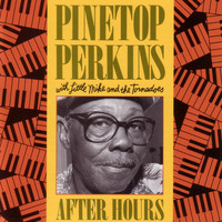 Pinetop Perkins - After Hours