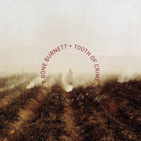 T-Bone Burnett - Tooth of Crime