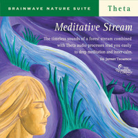 Dr. Jeffrey Thompson - Meditative Stream