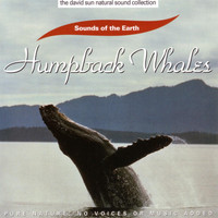Sounds Of The Earth - Humpback Whales