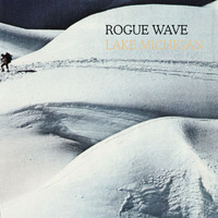 Rogue Wave - Lake Michigan