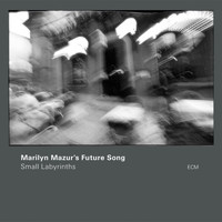Marilyn Mazur's Future Song - Small Labyrinths
