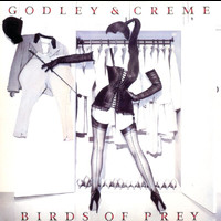 Godley & Creme - Birds Of Prey