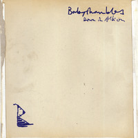 Babyshambles - Down In Albion (International Edition) (Explicit)
