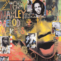 Ziggy Marley And The Melody Makers - One Bright Day