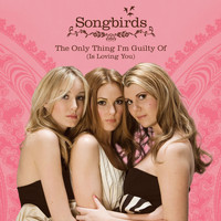 Songbirds - The Only Thing I'm Guilty Of (Is Loving You)